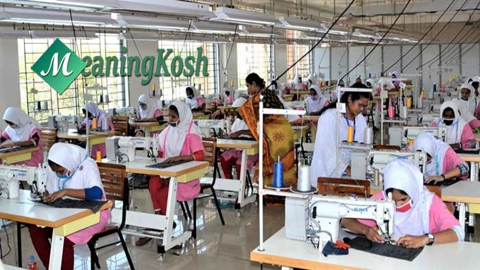 Empowerment of Women in Bangladesh Essay and Composition