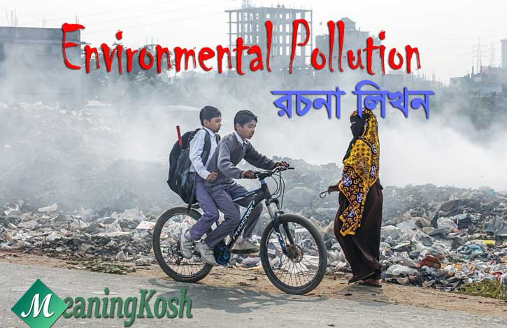 Environmental Pollution Essay and Composition